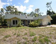 6110 Autumn Oaks Ln, Naples image