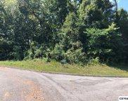 Lot 21 Warbler Point, Sevierville image