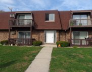 1115 Shagbark Road Unit #2E, New Lenox image
