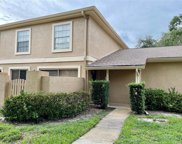 11841 Wildeflower Place, Temple Terrace image