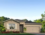 31404 Tansy Bend, Wesley Chapel image