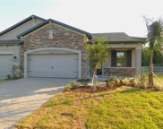 19325 Hawk Valley Drive, Tampa image