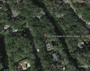 2726 Old Forest Drive, Seabrook Island image