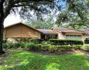 1040 Sylvia Lane, Tampa image