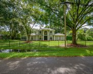 1411 Newberger Road, Lutz image