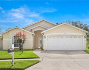 11002 Indian Oaks Drive, Tampa image