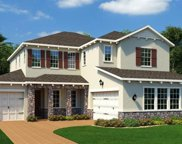 14355 Sunbridge Circle, Winter Garden image