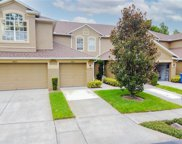 18821 Duquesne Drive, Tampa image