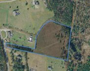 4.87 acres Red Bluff Rd., Loris image
