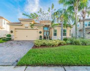 31166 Spruceberry Court, Wesley Chapel image
