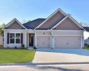 64 Black Pearl Court, Pawleys Island image