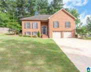 557 Oak Drive, Trussville image