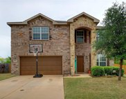 3965 Grizzly Hills Circle, Fort Worth image