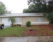 10321 Basket Oak Drive, Port Richey image