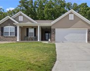 27 Hollow Tree  Court, Winfield image
