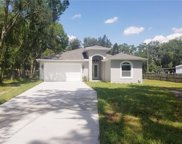 15623 Willowdale Road, Tampa image