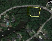 505 Links Pointe Court, Chapin image
