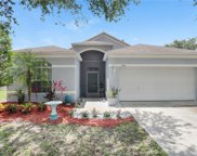 6746 Monarch Park Drive, Apollo Beach image