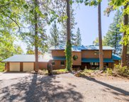 31129 Old Wagon Rd, Whitmore image