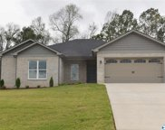 102 Eagle View Drive, New Market image