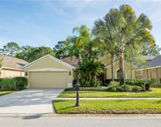 12742 Tar Flower Drive, Tampa image