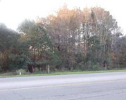Lot 1262 Brown Pelican Loop, Pawleys Island image