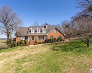 105 Palisades Pkwy, Oneonta image