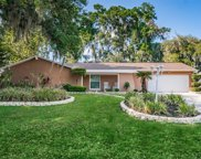 1204 Lady Guinevere Drive, Valrico image