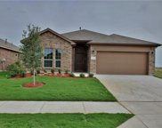 1008 Spanish Needle Trail, Fort Worth image