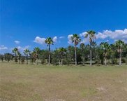 Royal Palm Drive, Groveland image