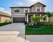 10905 Purple Martin Boulevard, Riverview image