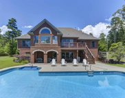 1051 Point View Road, Chapin image