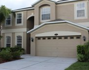 10747 Pictorial Park Drive, Tampa image