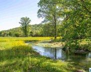 215 Lauren Ln Unit 40 +/- acres, Odenville image