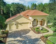 8819 Bel Meadow Way, Trinity image