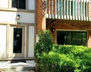 2370 Abbeywood Drive Unit #B, Lisle image