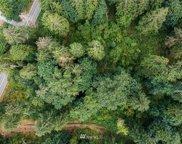 287 XX NE Cherry Valley Road, Duvall image
