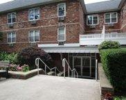 40 Daley  Place Unit #231, Lynbrook image