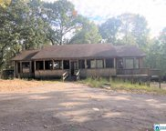 7362 Pineview Ln, Mccalla image