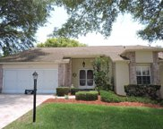 7273 Blue Skies Drive, Spring Hill image