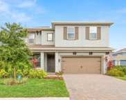 8012 Red Orchard Court, Tampa image