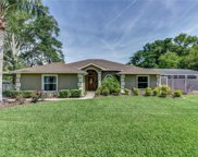 107 E Gardenia Drive, Orange City image