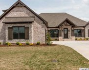 17492 Spring View Drive, Athens image