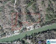 122 Vines Camp Dr Unit 17 acres, Quinton image