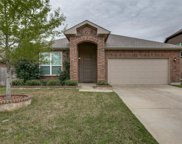 5217 Molasses Drive, Fort Worth image