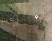 10 Ac Delzell Woods Road, Rogersville image