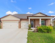 10817 Green Harvest Drive, Riverview image