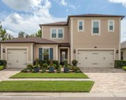 14209 Cheshire Acres Place, Tampa image