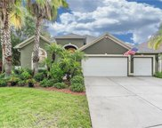 2334 Brenthaven Crossing Court, Lutz image