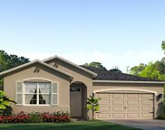 13304 Waterleaf Garden Circle, Riverview image